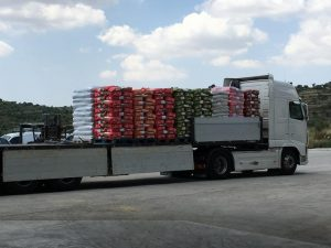 Camion con bancali con sacchi carta senza film